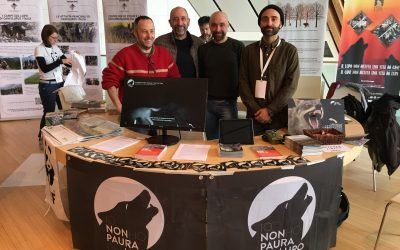 La conferenza finale di Life Wolf Alps: Per noi è un Si!