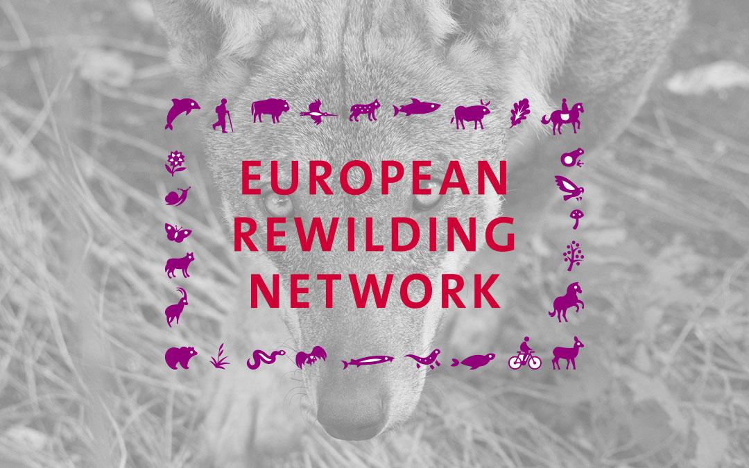 Io non ho paura del lupo entra a far parte dell'European Rewilding Network di Rewilding Europe