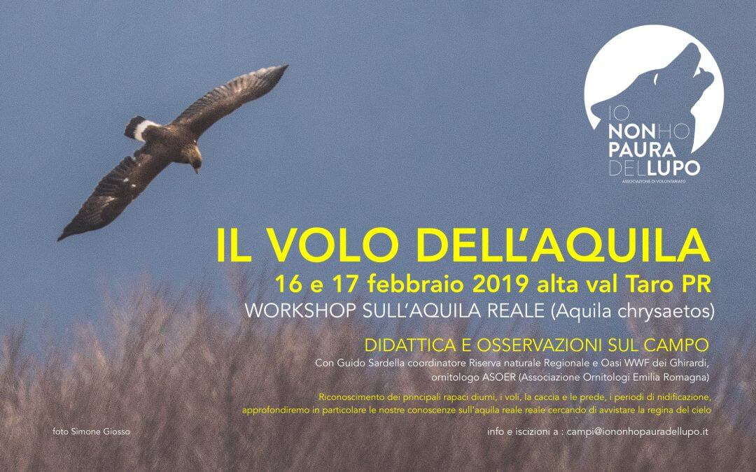 Workshop: il volo dell'aquila Alta val Taro 16-17 febbraio 2019