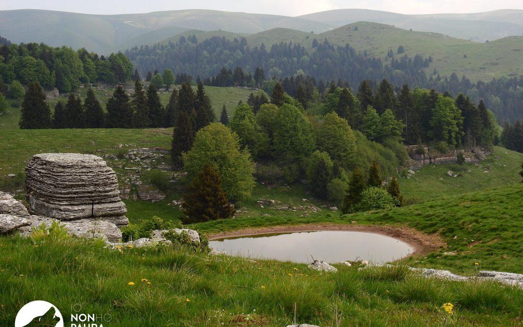 Campo Studio sul Lupo nel Parco Naturale Regionale della Lessinia – Maggio 2017