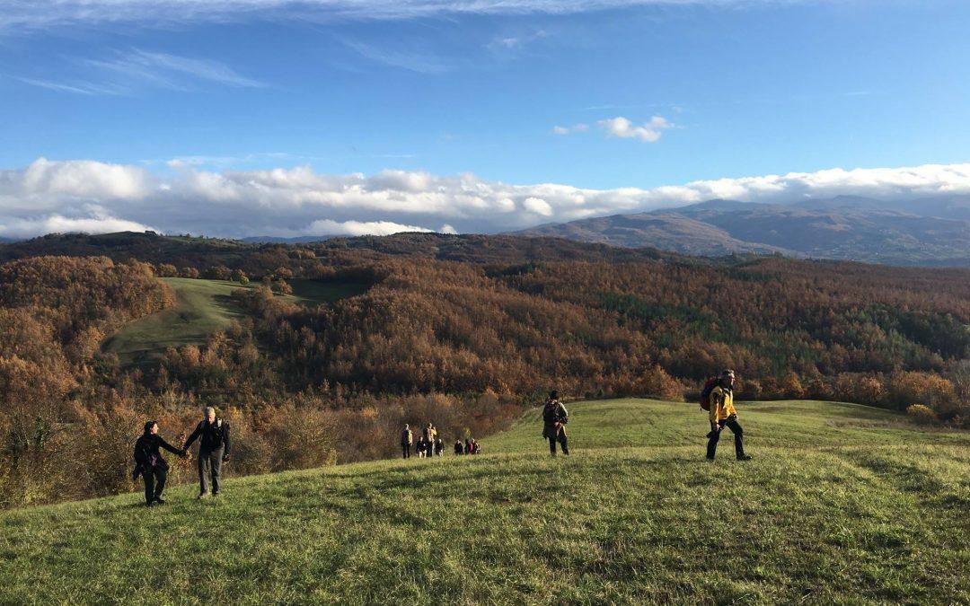 Campo studio sul lupo in Alta Val Taro – Novembre 2017