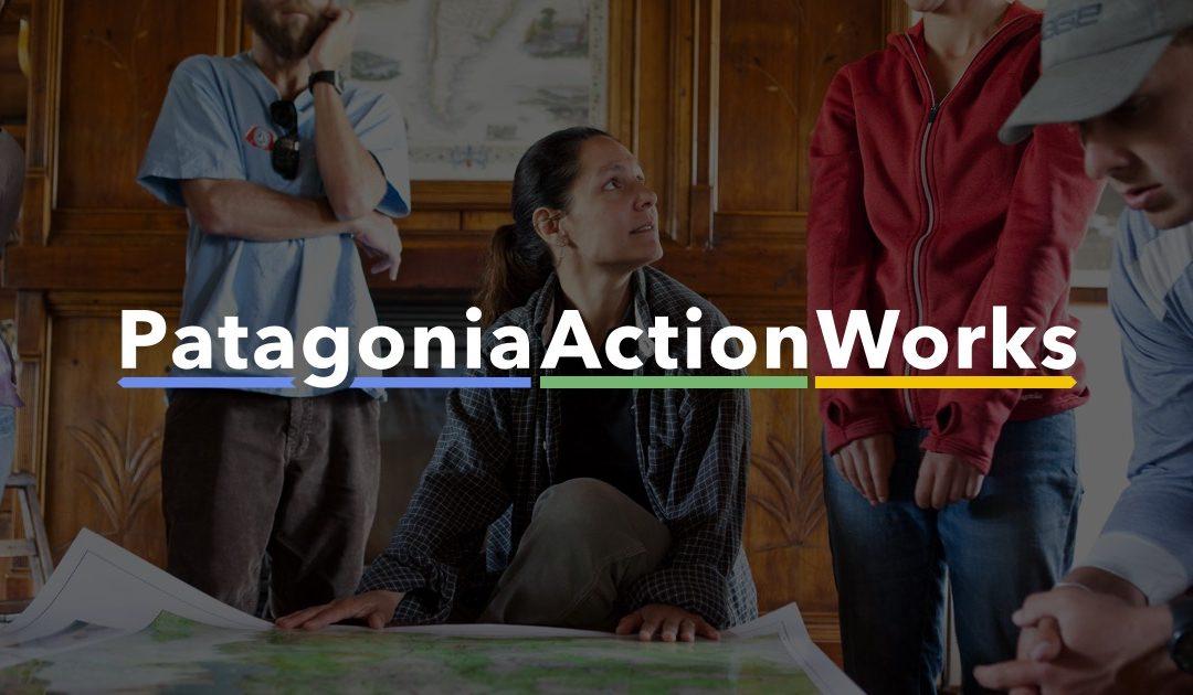 Io non ho paura del lupo su Patagonia Action Works