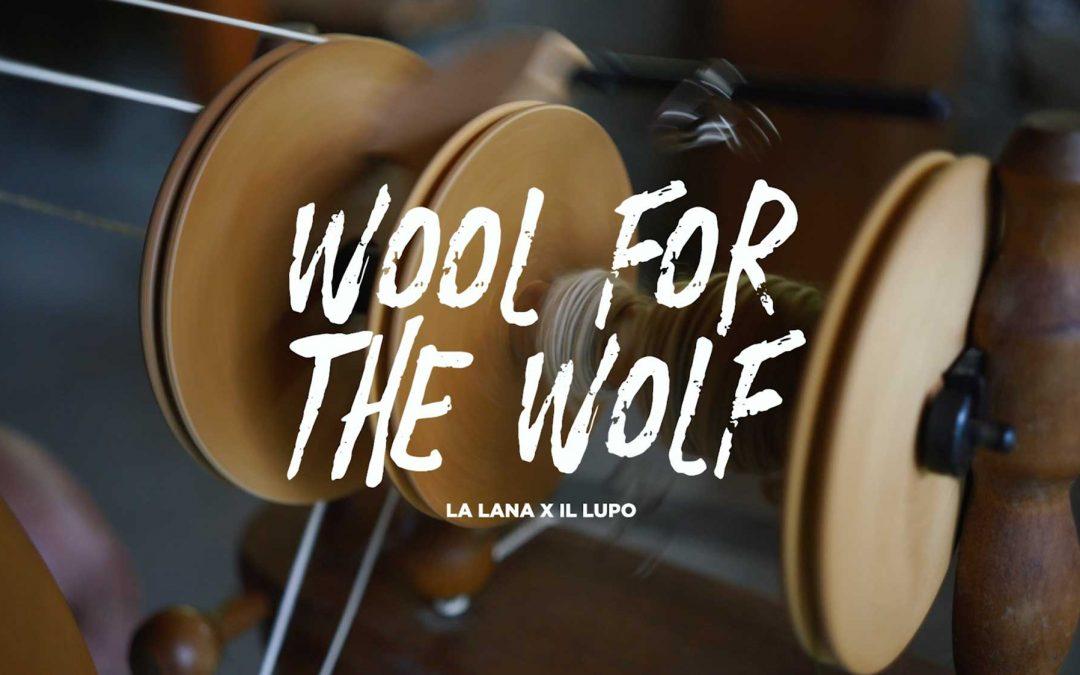 Wool for the Wolf ( La lana per il lupo ) un progetto di Io non ho paura del lupo