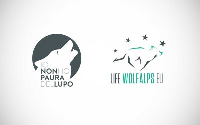 I'm not afraid of the wolf with Life WolfAlps EU