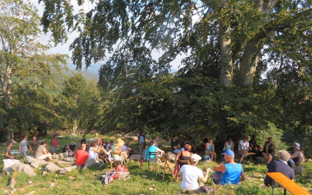 Storie di lupi e pastori in Lessinia, un'esperienza importante
