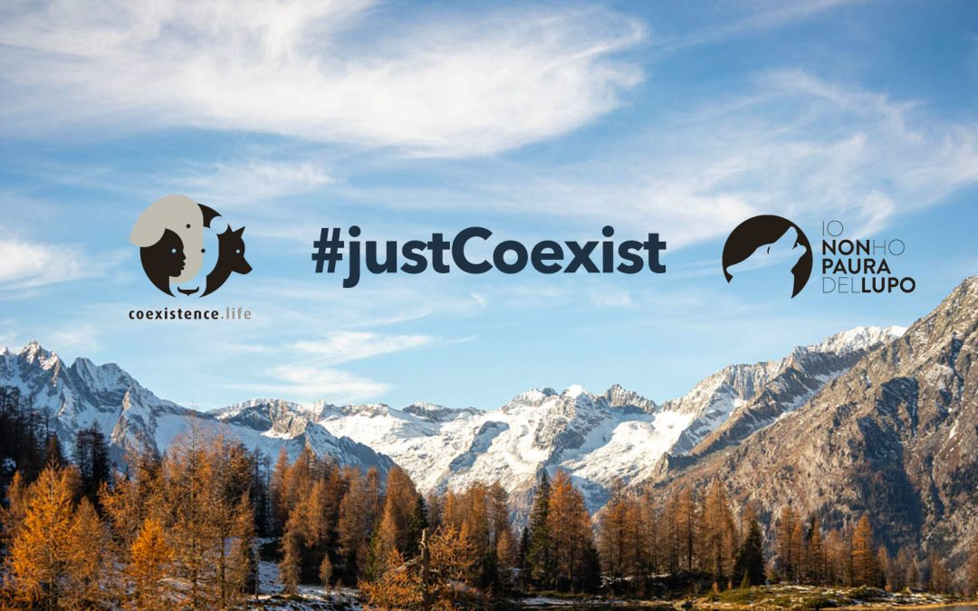 I'm not afraid of the wolf and Coexistence.life together for #justCoexist